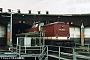 "LEW 12897 - DB AG ""202 388-5"" 17.05.1996 - PasewalkAndreas Gunke"