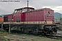 """LEW 15075 - DR """"114 803-0"""" 27.09.1991 - Saalfeld (Saale)Norbert Schmitz"""